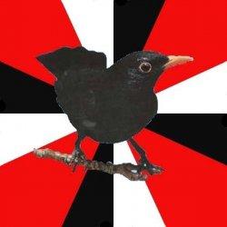 Соционическая птица