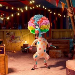 Зебра Марти в цирке